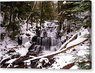 Winter Cascade Canvas Print by James Marvin Phelps