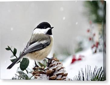 Canvas Print featuring the photograph Winter Chickadee by Christina Rollo