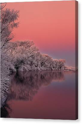 Winter Color Canvas Print