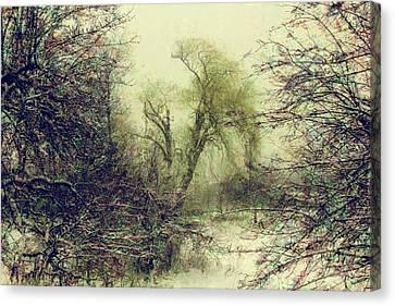 Winter Colours Canvas Print by John Stuart Webbstock