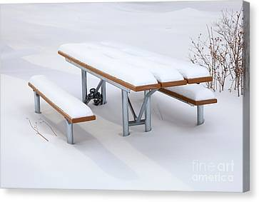 Picnic Table Canvas Print - Winter Cover by Mike  Dawson