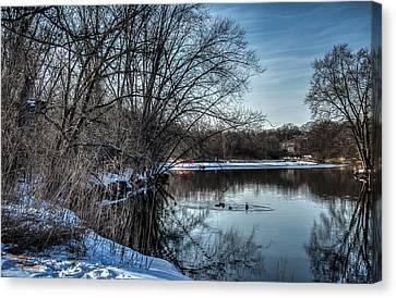 Winter Creek 2 Canvas Print by Dan Crosby