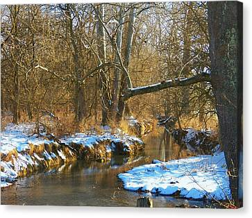 Winter Creek Canvas Print by Joyce Kimble Smith