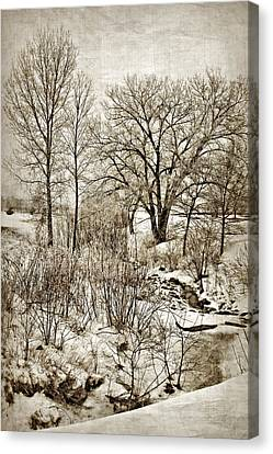 Winter Creek Canvas Print by Nikolyn McDonald