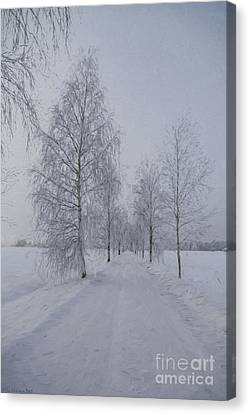Winter Day Canvas Print by Veikko Suikkanen