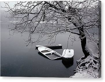Tear Canvas Print - Winter by Dieter Uhlig