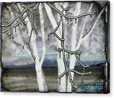 Winter Diffused Canvas Print by Arlene Carmel