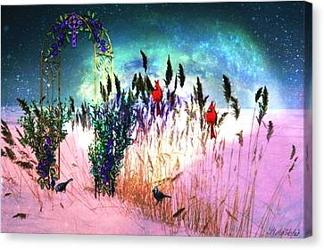 Winter Dreams Canvas Print by Mary Anne Ritchie