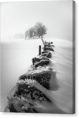 Winter Dress Canvas Print