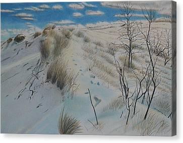 Winter Dune Canvas Print by Scott Kingery
