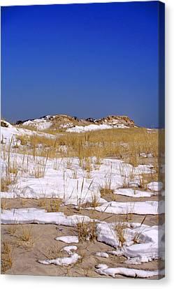 Canvas Print featuring the photograph Winter Dunes Fire Island by Karen Silvestri