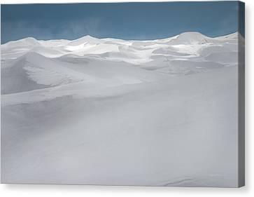 Winter Dunes Canvas Print by Leland D Howard