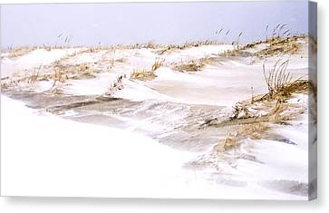 Winter Dunes Canvas Print by William Walker