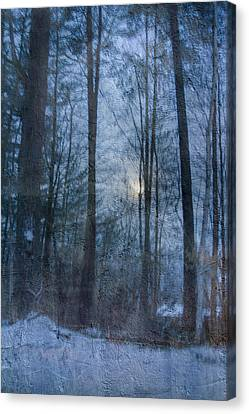 Winter Early Morning Setting Moon Canvas Print