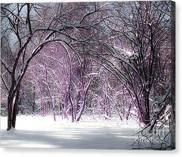 Winter Faeries Canvas Print by Barbara McMahon