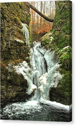 Winter Falls Canvas Print