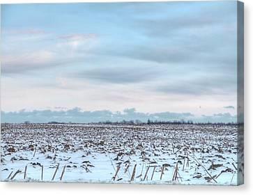 Winter Farm Field Canvas Print by Heather Allen