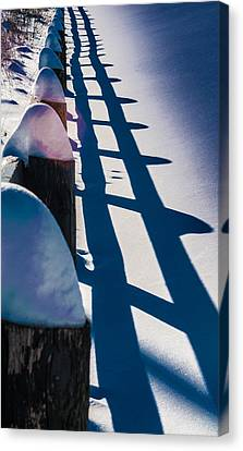 Winter Fence  Canvas Print by Douglas Pike