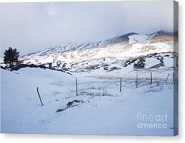 Winter Fence Canvas Print by Nabucodonosor Perez