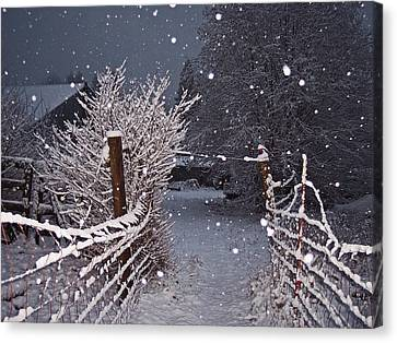 Winter Fence Canvas Print by Steve Battle