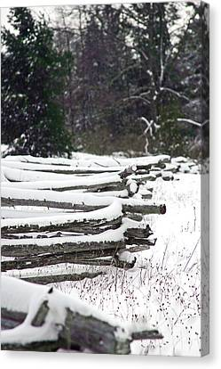Winter Fence Canvas Print by Ty Helbach
