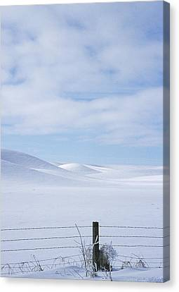 Contour Farming Canvas Print - Winter Fenceline by Latah Trail Foundation