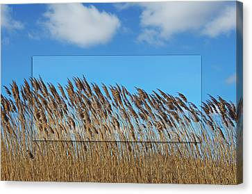 Prairie Grasslands Canvas Print by Steven Michael