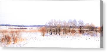 Winter Fields. In Color Canvas Print by Jenny Rainbow