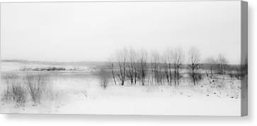 Winter Fields. Monochromatic  Canvas Print by Jenny Rainbow