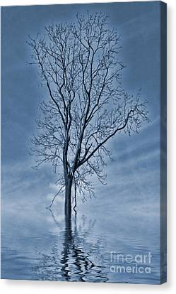 Winter Floods Painting Canvas Print by John Edwards