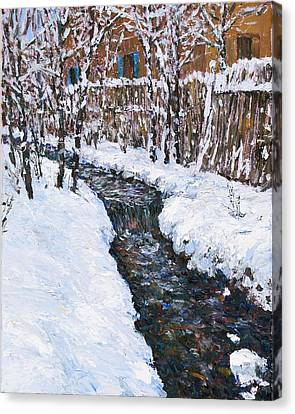 Winter Flowing Canvas Print by Steven Boone