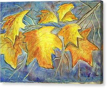 Winter Foliage Canvas Print by Belinda Lawson