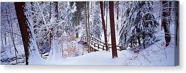 Winter Footbridge Cleveland Metro Canvas Print by Panoramic Images