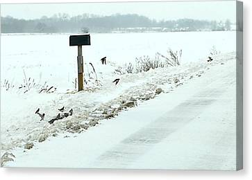Indiana Landscapes Canvas Print - Winter Foragers by Julie Dant
