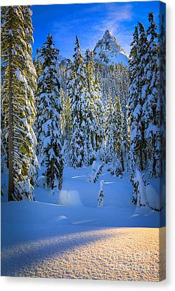 Winter Forest Canvas Print by Inge Johnsson