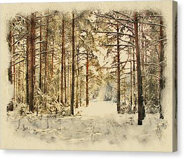 Winter Forest Landscape 39 Canvas Print by Yury Malkov