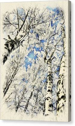 Winter Forest Landscape 41 Canvas Print by Yury Malkov