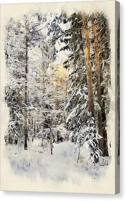 Winter Forest Landscape 44 Canvas Print