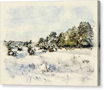 Winter Forest Landscape 6 Canvas Print by Yury Malkov