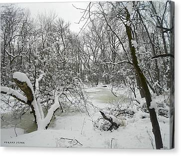 Winter Forest Series 3 Canvas Print