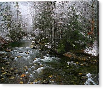 Winter Fresh Canvas Print by Michael Eingle