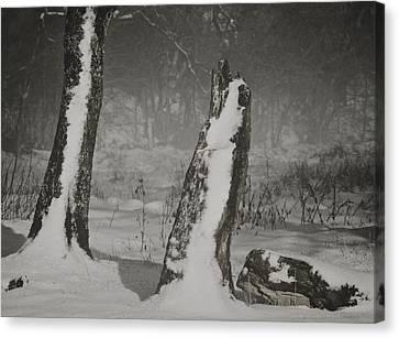 Winter Gate Canvas Print by Odd Jeppesen