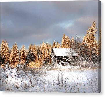 Winter Glow Canvas Print by Doug Fredericks
