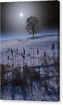 Canvas Print featuring the photograph Winter Glow by Larry Landolfi