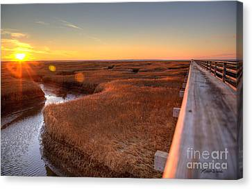Winter Gold Canvas Print