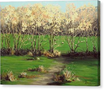 Winter Greens Canvas Print by Karen Ilari