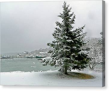 Canvas Print featuring the photograph Winter Harbor Scene by Janice Drew