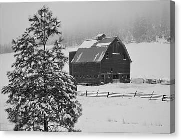 Winter Haven Canvas Print by Duane King
