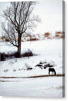 Winter Horse Pasture 1 Canvas Print by Janine Riley