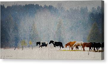 Canvas Print featuring the photograph Winter Horses by Ann Lauwers